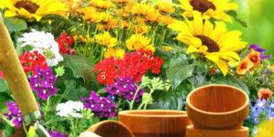 Fête des Fleurs et du Jardin ! @ Sous la Halle et Allées Jules Ferry | Port-Sainte-Foy-et-Ponchapt | Nouvelle-Aquitaine | France